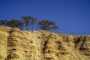 Israel, Dead Sea, Ein Gedi national park the eroded marl stone cliff overlooking the stream