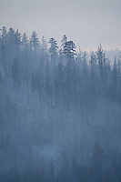 Angora Fire in South Lake Tahoe, CA