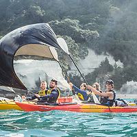 Best of Kiwi 2000 - 2019