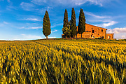 Tuscany house in the middle of a wheat field