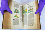The Ortus Sanitus (Garden of Health) a book by Jacob Meydenbach, 1481 - Forensics: the anatomy of crime – announcement of Wellcome Collection's major spring exhibition.  Never-displayed items from historic figures of forensic medicine including the work of: Sir Bernard Spilsbury who was the first of the celebrity pathologists whose evidence, taken down on indexed note cards, turned cases - including that of Dr Crippen; Alphonse Bertillon who invented the mug shot and developed classifying techniques for identification (demonstrated in his 1893 book Identification anthropometrique: instructions signaletiques) - Sherlock Holmes is described as 'the second highest expert in Europe' after Bertillon in The Hound of the Baskervilles; and the Ortus Sanitus (Garden of Health) a book by Jacob Meydenbach, 1481, illustrating, amongst other things, the relationship of flies to carrion – contradicting existing medieval superstition.