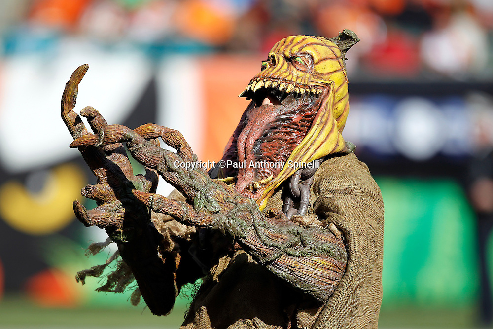 A fan in a Halloween costume participates in halftime festivities during the Cincinnati Bengals NFL week 8 football game against the Miami Dolphins on Sunday, October 31, 2010 in Cincinnati, Ohio. The Dolphins won the game 22-14. (©Paul Anthony Spinelli)