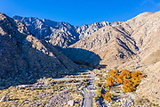 The Road to the Palm Springs Tramway