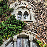 Ch&acirc;teau d&rsquo;Ouchy Vine-covered Windows in Ouchy, Switzerland<br />