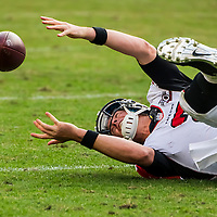 Charlotte, NC - Dec 13, 2015:  The Atlanta Falcons take on the Carolina Panthers at Bank of America Stadium in Charlotte, NC. The Panthers stay undefeated, winning 38-0.