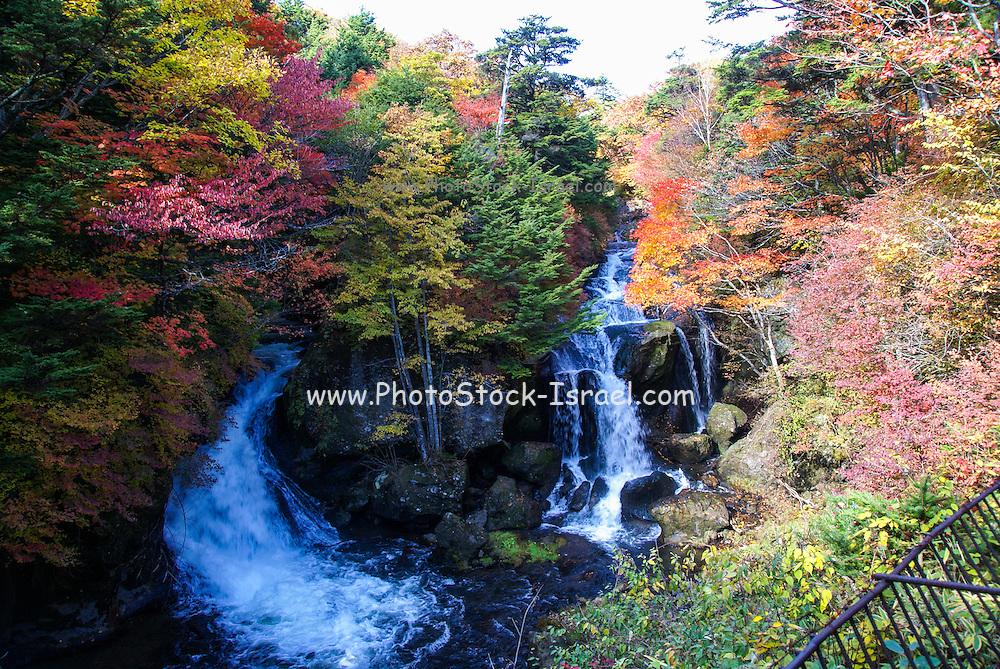Japan, Tochigi, Nikko, National park waterfall