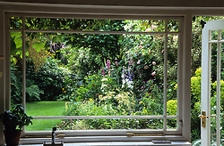 Looking out through kitchen window to flower border in small town garden