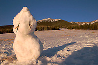 Snowman, Coconino National Forest, Arizona
