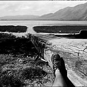 SELF PORTRAITS / AUTORRETRATOS.Photography by Aaron Sosa.Unare Lagoon / Laguna Unare, El Hatillo, Anzoategui State - Venezuela 2001.(Copyright © Aaron Sosa)