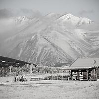rustic old cabin on the edge of glacier national park, blackfeet reservation