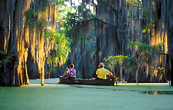 Stock photo of an older couple paddling a canoe through a moss covered river