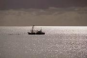 Nederland, Kornwerderzand, 30-8-2018Een vissersschip uit Wonseradeel Makkum bij de netten, fuiken in het water van het IJsselmeer waar ze op garnalen vissen .Foto: Flip Franssen