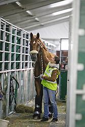 Warum Nicht FRH and groom Anna Kleniuk<br /> Alltech FEI World Equestrian Games - Kentucky 2010<br /> © Dirk Caremans