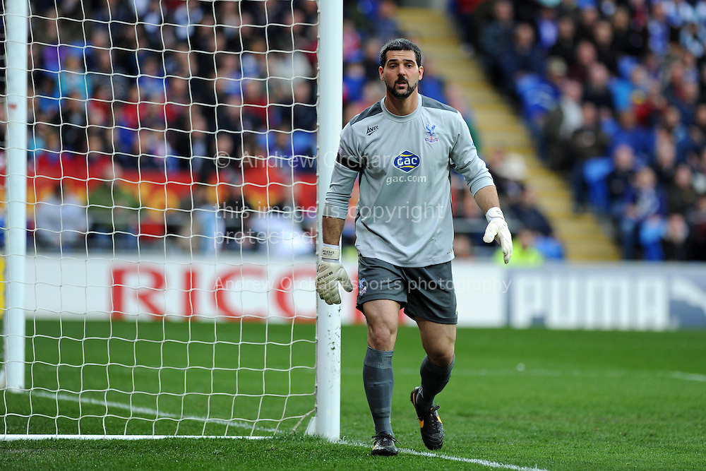 Crystal Palace goalkeeper Julian Speroni looks on. Barclays Premier league match, Cardiff city v Crystal Palace at the Cardiff city stadium in Cardiff, South Wales on Saturday 5th April 2014.<br /> pic by Andrew Orchard, Andrew Orchard sports photography.