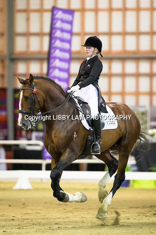 NZL-Anya Noble (AIRTHREY HIGHLANDER) Superior Rubber Surfaces National Challenge Final CDI3* FEI Grand Prix: 2015 NZL-Bates NZ Dressage Championships, Manfeild Park - Feilding (Thursday 5 March) CREDIT: Libby Law COPYRIGHT: LIBBY LAW PHOTOGRAPHY