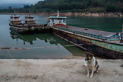 A dog sits on the shore in front of sand dredging vessels in Simaogangzhen, Yunan, China. The dredged sand is sold locally and to large scale construction sites in nearby major cities such as Kunming and Jinhong.