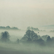 Rural landscape shrouded in morning fog - textured photograph