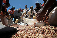 Refugees receive beans during food distribution at Mpati IDP camp, about 100 km northwest of Goma, DRC on April 23, 2010. The long war had involved 9 African nations and claimed an estimated three million lives as a result of fighting or disease and malnutrition..Photo by Kuni Takahashi