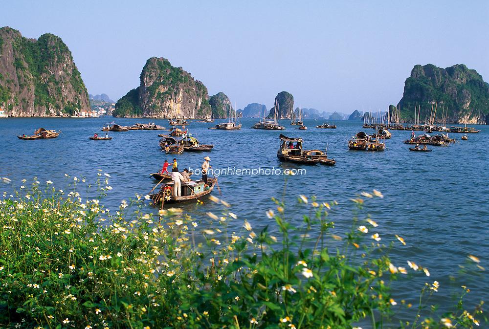 Vietnam Images-landscape-Ha Long