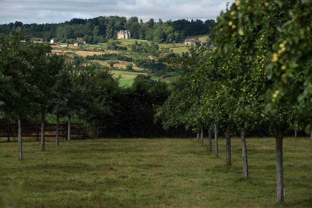 Les vergers et un manoir du Pays d'Auge.<br /> Saint Martin du Mesnil-Oury