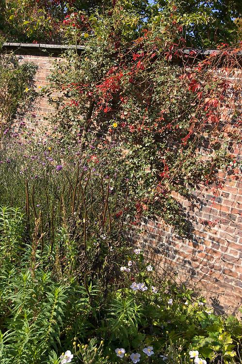 Kitchen Garden Arley Arboretum, Worcestershire.