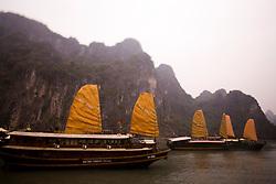 Junk Ships Sailing in Halong Bay, Vietnam