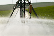 Pivot irrigation machine at Madison Farms