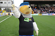 Haydon the Womble with hand in the air during the EFL Sky Bet League 1 match between AFC Wimbledon and Plymouth Argyle at the Cherry Red Records Stadium, Kingston, England on 21 October 2017. Photo by Matthew Redman.