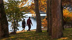 THEMENBILD - ein Paar spaziert an der Uferpromenade an einem sonnigen Herbsttag, aufgenommen am 21. Oktober 2015, Zell am See, Österreich // a couple walking along the promenade on a sunny Autumn Day, Zell am See, Austria on 2015/10/21. EXPA Pictures © 2015, PhotoCredit: EXPA/ JFK