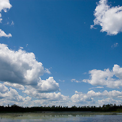 Puffy cumulus clouds above Little Cherry Pond in the Pondicherry National Wildlife Refuge in Jefferson, NH.  White Mountains.