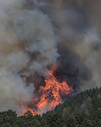 Flames from Cajete Fire flare up above mixed conifer forest on the north slope of Los Griegos Mountain, © 2017 David A. Ponton