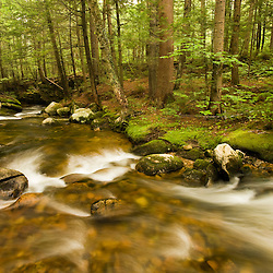 Moose Brook at Moose Brook State Park in Gorham, new Hampshire.