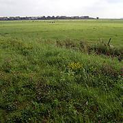 Blaricumse Meent Aristoteleslaan gaat bebouwd worden, huizen, grasland, weide, groen