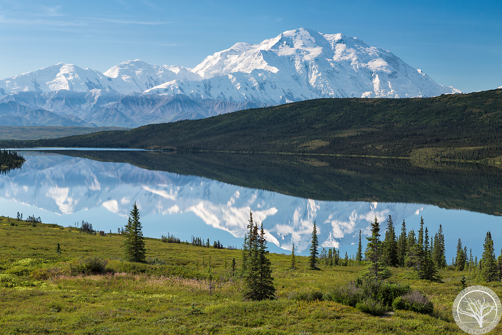 Mt. McKinley (Denali) and other mountains of the Alaska Range reflect in the still waters of Wonder Lake. Denali National Park, Alaska