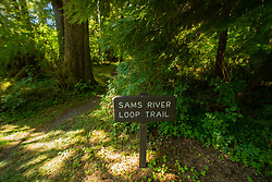 Sam's River Loop Trail Sign, Upper Queets Valley, Olympic National Park, Washington, US
