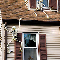 "Skeletons climb up the outside of Matthew McKee's house, in Dedham MA. It is part of the ever growing collection of hand made, customized and moded Halloween decorations that appear in his yard each year. With the help of his two sons, the yard sprouts ""flaming"" pumpkins, 4 foot tall hand made grave stones, colored lights and fog machines..This year's project edition, the climbing skeletons, was featured on instructibles.com, a popular diy web site. This image is ©2008 Matthew McKee and may be reproduced for editorial purposes only. For any other use, please contact the studio at 781-329-4109 to avoid copyright violation."