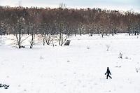 Winter walking in the National Sleeping Dunes in Benzie County, Michigan.