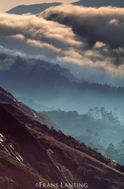 Monsoon storm clouds, Eravikulum National Park, Western Ghats, India