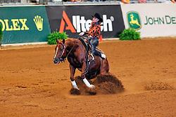 Elzinga Fenna (NED) - Smoking Kills<br /> Alltech FEI World Equestrian Games <br /> Lexington - Kentucky 2010<br /> © Dirk Caremans