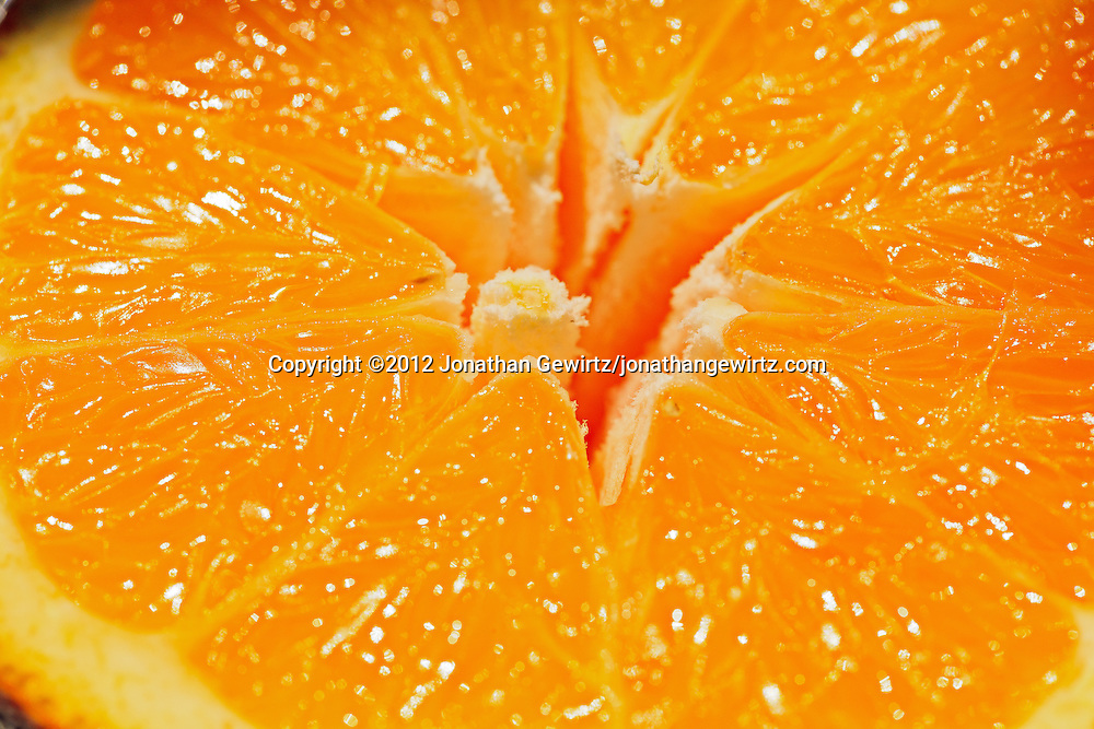 Closeup view of the surface of a cut orange.