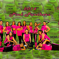 6-20-14 Pink Panthers U12  2014