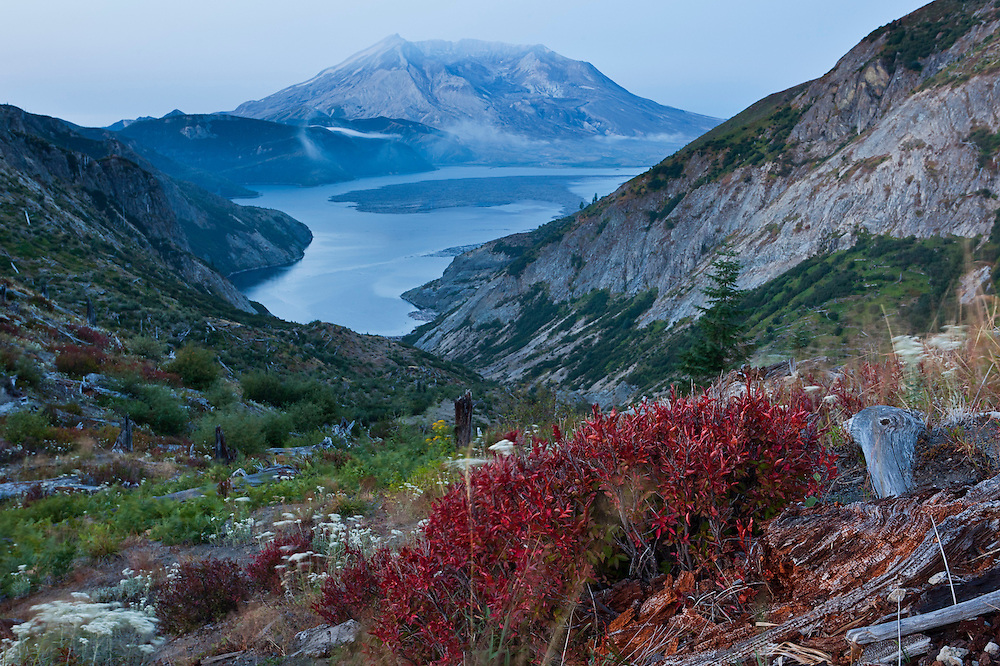 Spirit lake at Mt St Helens, Mt Margaret Wilderness