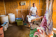 16 JUNE 2012 - GILA RIVER INDIAN COMMUNITY, PHOENIX, AZ: Ibrahim Swara-Dahab prepares to slaughter a sheep in the killing room on his farm. Swara-Dahab, 57, left Somalia in 1993. He lived in a refugee camp in Kenya for five years before coming to the United States and settled in the Phoenix area in 2006. He got a $10,000 loan from the micro-enterprise development program for refugees. The money allowed him to buy dozens of goats and sheep, each worth $130 to $200, turning his one-sheep operation into a money-making, time-consuming herd. He now operates a full time goat ranch and slaughter house. He slaughters his goats and sheep in the Muslim halal tradition. Most of his customers are fellow refugees and Muslims who prize goat meat or eat only meat slaughtered according to halal traditions. His butchering operation is on the Gila River Indian Community, near Laveen, AZ, just southwest of Phoenix.    PHOTO BY JACK KURTZ