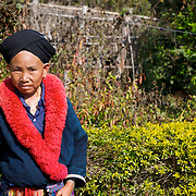 Akha hill tribe woman in Chiang Rai province, Thailand. The Akha are the poorest of the hill tribes, well known to tourists for their extraordinary costumes and exotic appearance, the Akha originate from Tibet, and have only recently entered Thailand, the first immigrants arriving last century. They are less open to change than many other hilltribes, proudly retaining their old customs., Iu Mien (also called Yao) hill tribe woman in northern Thailand. ..The Yao hail from southern  China, and at one time had considerable power within the Chinese empire, to the extent that at one time a Yao princess was married to an emperor of China. They are the only hill tribe to use a written language, Chinese, and practice a written religion base on medieval Chinese Taoism, although in recent years there have been many converts to Christianity and Buddhism.