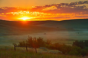 Sunrise on the prairie, Near Cypress Hills Provincial Park, Saskatchewan, Canada