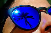 Palm tree reflected in sun glasses, Belize