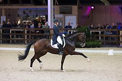 Donkers Esmee, (NED), Zaffier<br /> Juniors Freestyle Test<br /> CDI 4* Azelhof Lier 2015<br /> © Hippo Foto - Leanjo de Koster