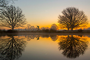 UNITED KINGDOM, London: 26 February 2019. A cyclist makes his way through Richmond Park this morning during sunrise on what is set to be the warmest day in February since records began. Temperatures are set to reach up to 20 degrees Celsius in the capital today. Rick Findler / Story Picture Agency