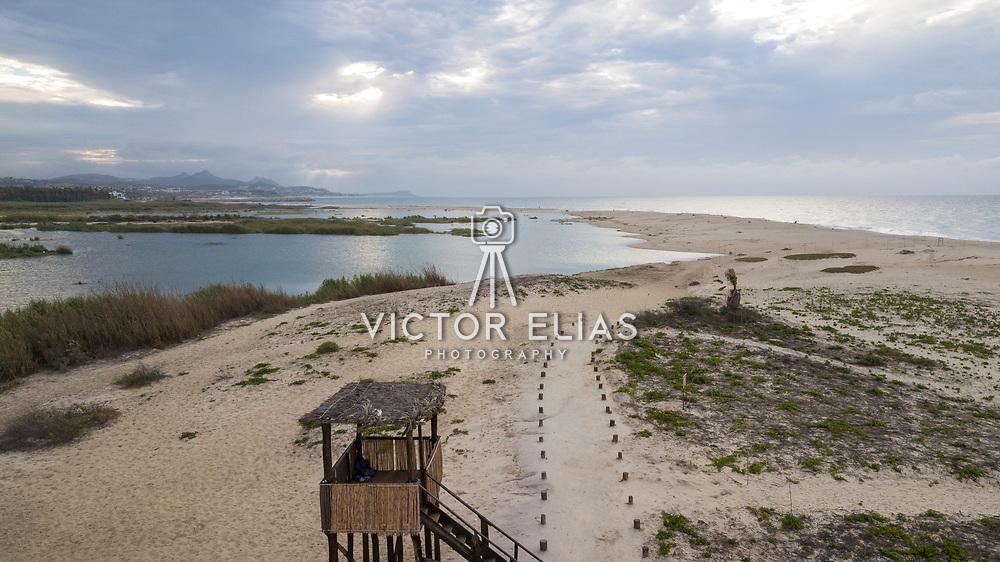 San Jose Estuary. San Jose del Cabo, BCS.