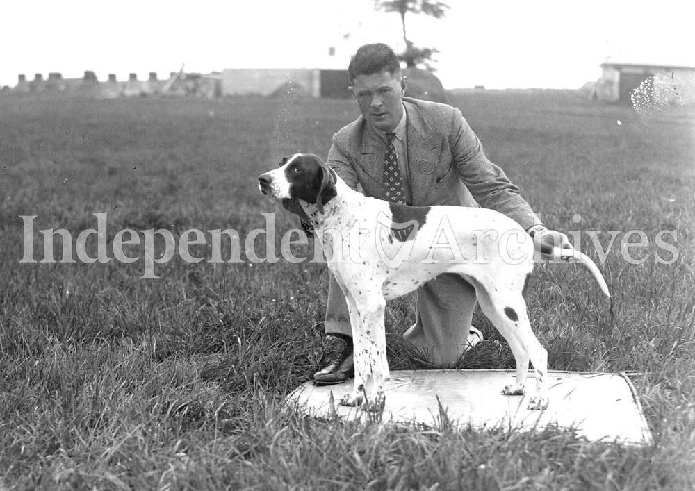 H2930 Horse Show - Limerick. Dog and man. (n.d.). 1935 (Part of the Independent Ireland Newspapers/NLI Collection)